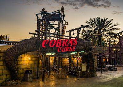 Entrance to Cobra's Curse at Busch Gardens Tampa.